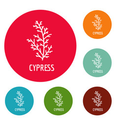Cypress leaf icons circle set vector