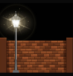 Lamp post and brickwall at night vector