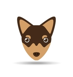Lovely head chihuahua puppy dog vector