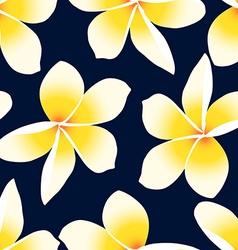 Yellow tropical Frangipani Plumeria floral vector