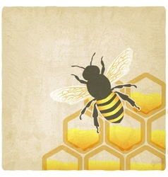 bee honeycomb old background vector image