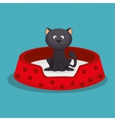 beauty kitten red bed pet vector image