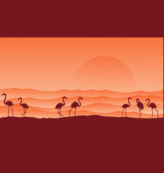desert scenery with flamingo silhouettes vector image