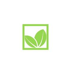 Green leaf logo shape plant in the square frame vector image