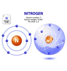 atom nitrogen vector image