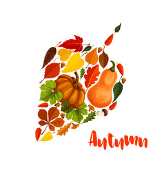Autumn pumpkin leaf foliage greeting poster vector