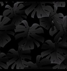 black seamless pattern of monstera leaves vector image