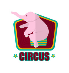 circus show with trained elephant promotional vector image