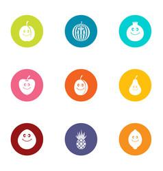 pomegranate icons set flat style vector image