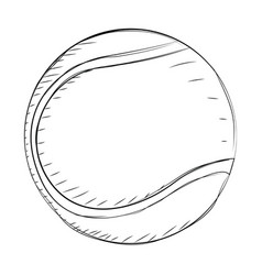 sport ball sketch vector image