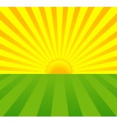 summer sunrise vector image