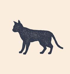 cat silhouette concept design home animals vector image