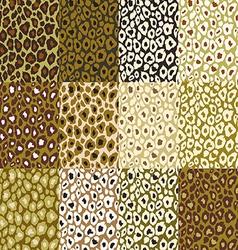 Leopard texture vector
