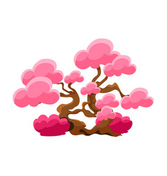 Pink tree bonsai miniature traditional japanese vector