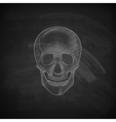 A chalk human skull on a blackboard background vector