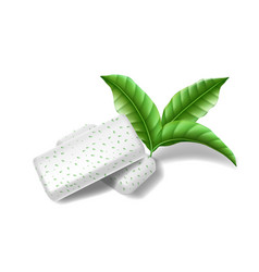 Chewing pads gum with mint leaves isolated bubble vector