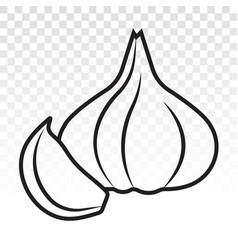 Garlic cloves allium sativum line art icon vector