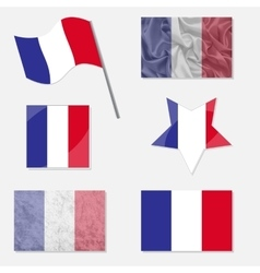 Set with flags of france vector