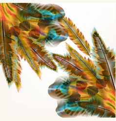 colorful background with birds feathers vector image