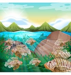 Ocean scene with lion fish underwater vector image vector image