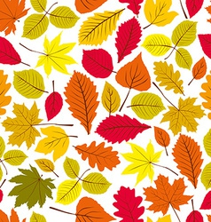 Beautiful leaves seamless pattern natural endless vector image vector image