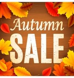 Autumn Sale Anouncement vector