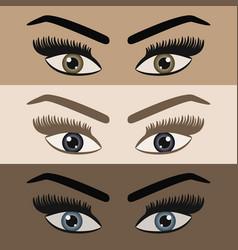 Close up beautiful women pair eyes looking vector
