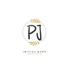 P j pj beauty initial logo handwriting logo vector