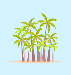 Palm grove tropical palm trees in flat style vector