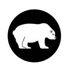 Polar bear isolated icon vector