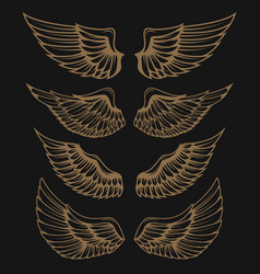Set of golden wings on dark background vector