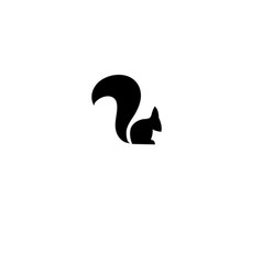 Squirrel icon on isolated vector