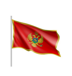 national flag of montenegro country vector image