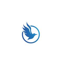 dove bird logo template vector image