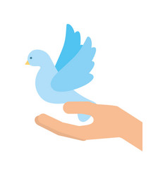hands human with cute dove flying icon vector image