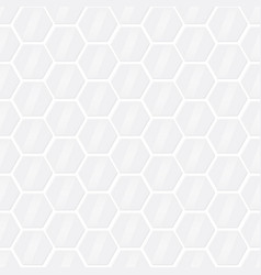 hexagon geometric light gray graphic design vector image