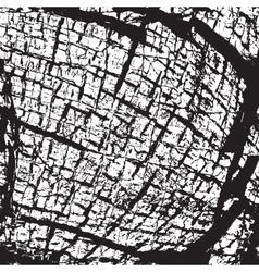 Skin Background vector image