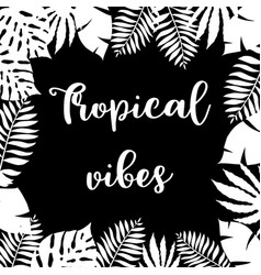 tropical vibes hand drawn frame vector image