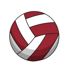 volleyball ball sport image vector image