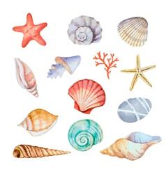 Watercolor set seashells vector