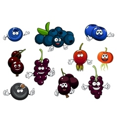 Black currant blueberry and briar fruits vector image