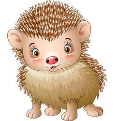 cute baby hedgehog vector image