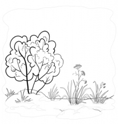 garden with a bush contours vector image