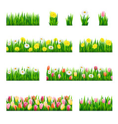 set borders with grass and flowers vector image