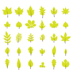 Set of autumn leaves Leaf collection in flat style vector image vector image