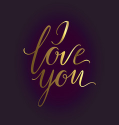 romantic lettering i love you hand written vector image