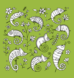 chameleon collection sketch for your design vector image