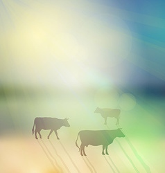 cow set silhouette on sunny sky and grass vector image vector image