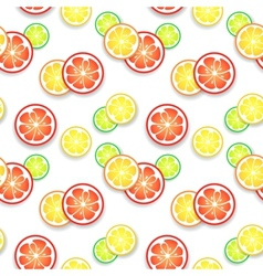 Citrus fruit background for your fresh juicy vector image