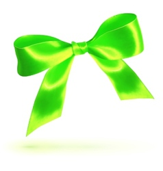 Green silky bow vector image